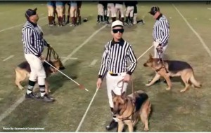 Image result for 3 blind refs